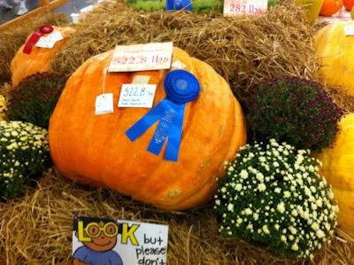 https://i0.wp.com/david-drake.com/wordpress/wp-content/uploads/2011/11/pumpkin.jpg?w=625