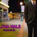 Męska Atrakcyjność – SMV w pigułce
