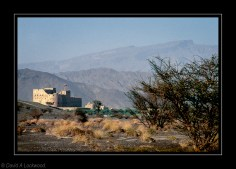 Jabrin fort from a distance