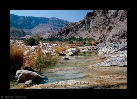 Mountain Wadi