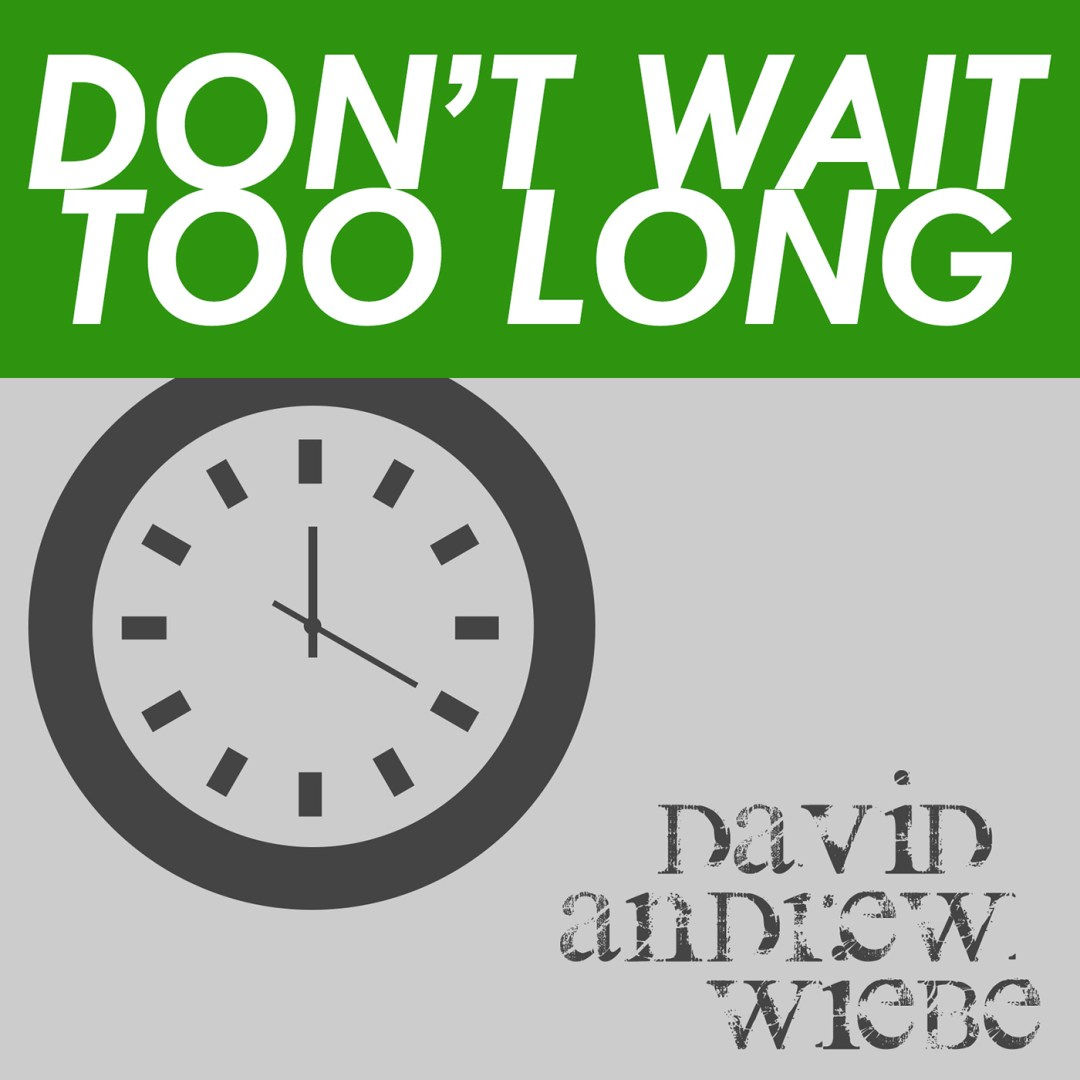 Don't Wait Too Long - David Andrew Wiebe