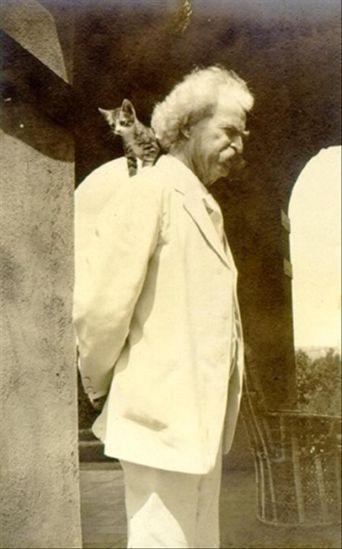 Para Twain, um gato pode ser seu amigo, se assim você quiser, desde que haja igualdade de condições (Foto: Twain Family)