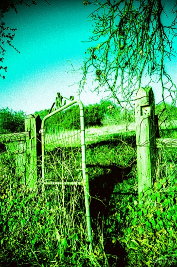 Gate, Smartsville, California. (Kodak Ektachrome 100SW Saturated Warm Film, process C-41).