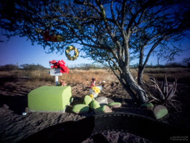 Scrub Tree and Roadside Shrine Near Huatamote, Highway 1, Baja California Sur, Mexico