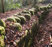 Dry-stone wall, almost indistinguishable from the natural features around it.