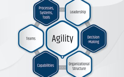 Agility – The Key to Organizational Success