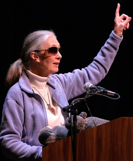 Jane Goodall - UCSB Arts & Lectures 4/9/04 Arlington Theater