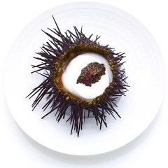 Bouley at Home Tea Lunch - Uni - Sea Urchin in a shell with caviar