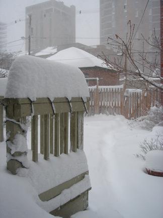 blizzard-christmas-2006-2.jpg