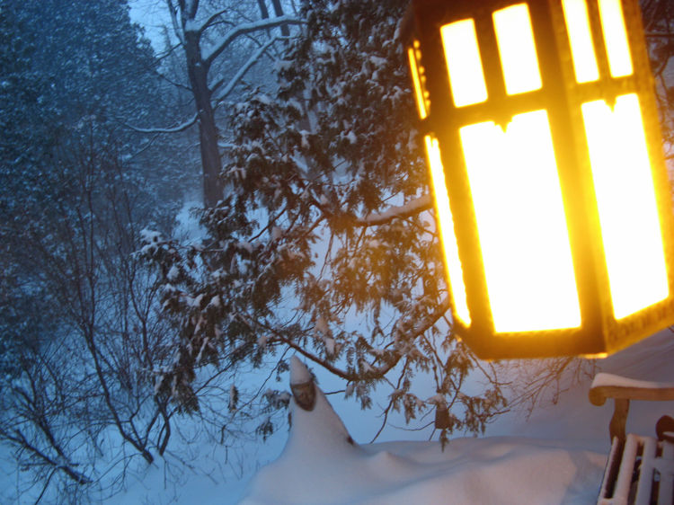 Elizabeth's snowy view from Vermont