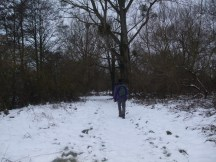 Walking Home for Christmas 019