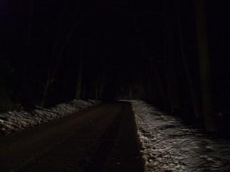 Walking Home for Christmas 091