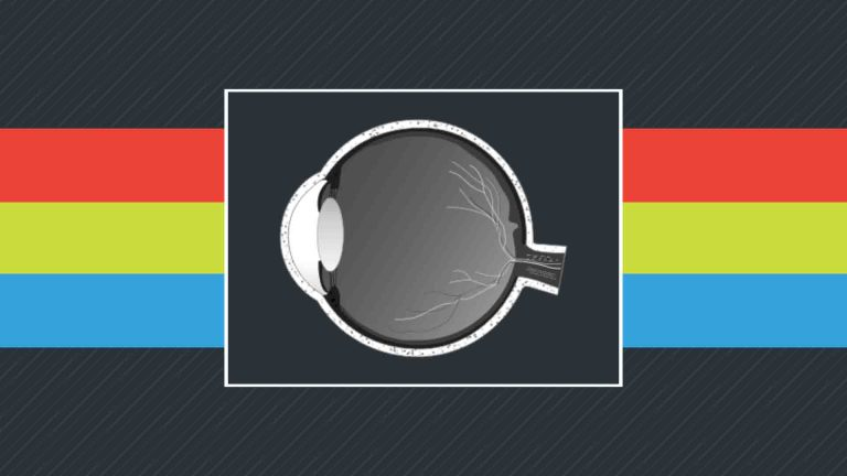 Olho e a percepção da cor 2021