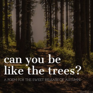 Can you be like the trees?