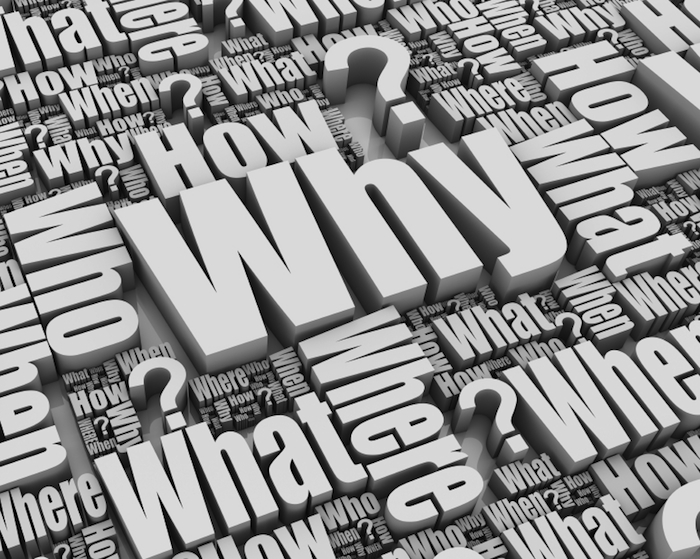 """Why Asking """"Why"""" Creates Better Employees - David DeWolf"""