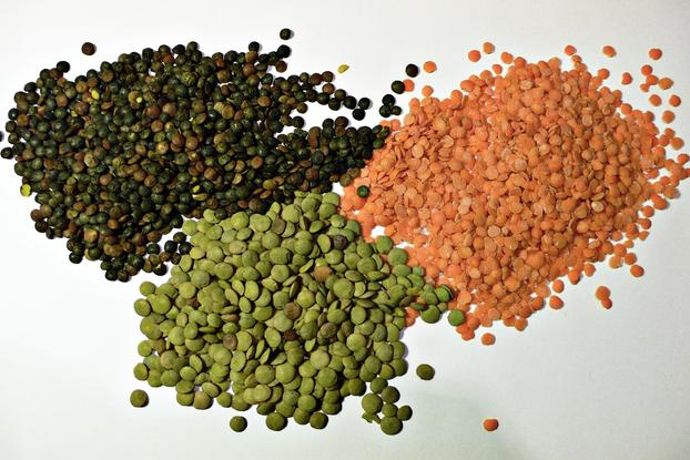 groups of seeds