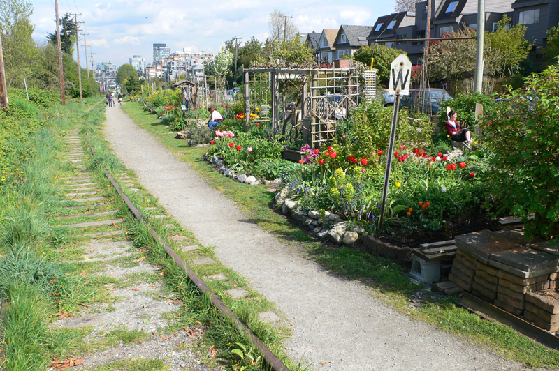 Vancouver Gardens Railroaded By Mean Tactics  The Tyee