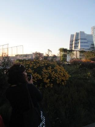camilla fiori