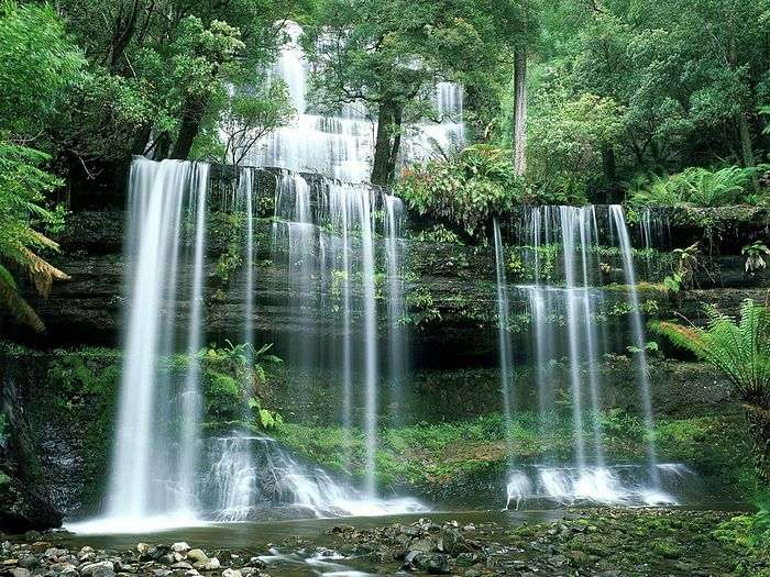 russell-falls-mount-field-national-park-tasmania