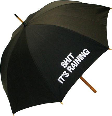 shit-its-raining