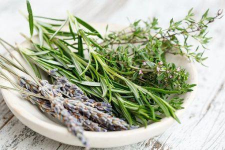 Hierbas aromáticas: romero, tomillo y lavanda