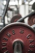 Fitness weight © David Hamilton Melby