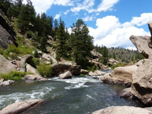 2014-08-07-eleven-mile-canyon-4