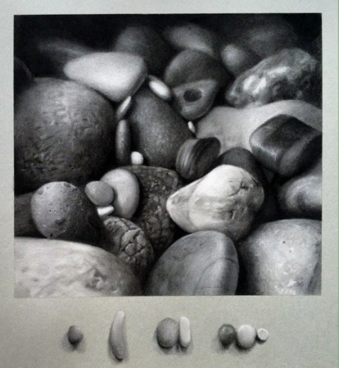 Fibbonaci Finds, 11″x12″ charcoal on paper, sold