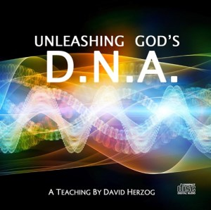 CD-DNA-2