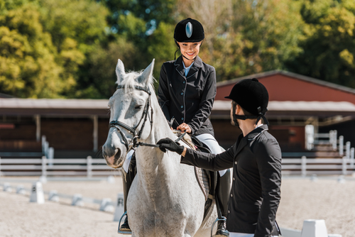 Should Equestrians Use Steel Buildings?