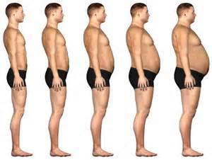 ventre plat à obèse