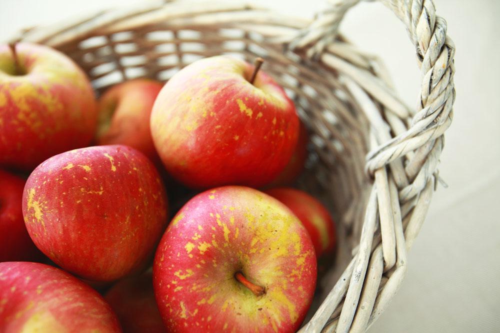 apples004