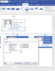 Orgchwiz options also aliasing data columns for visio organization chart wizard bvisual rh blogisual
