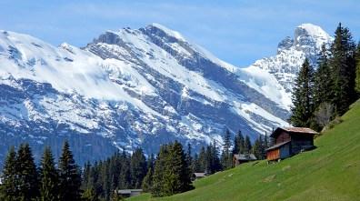 Swiss Hillside Cabin
