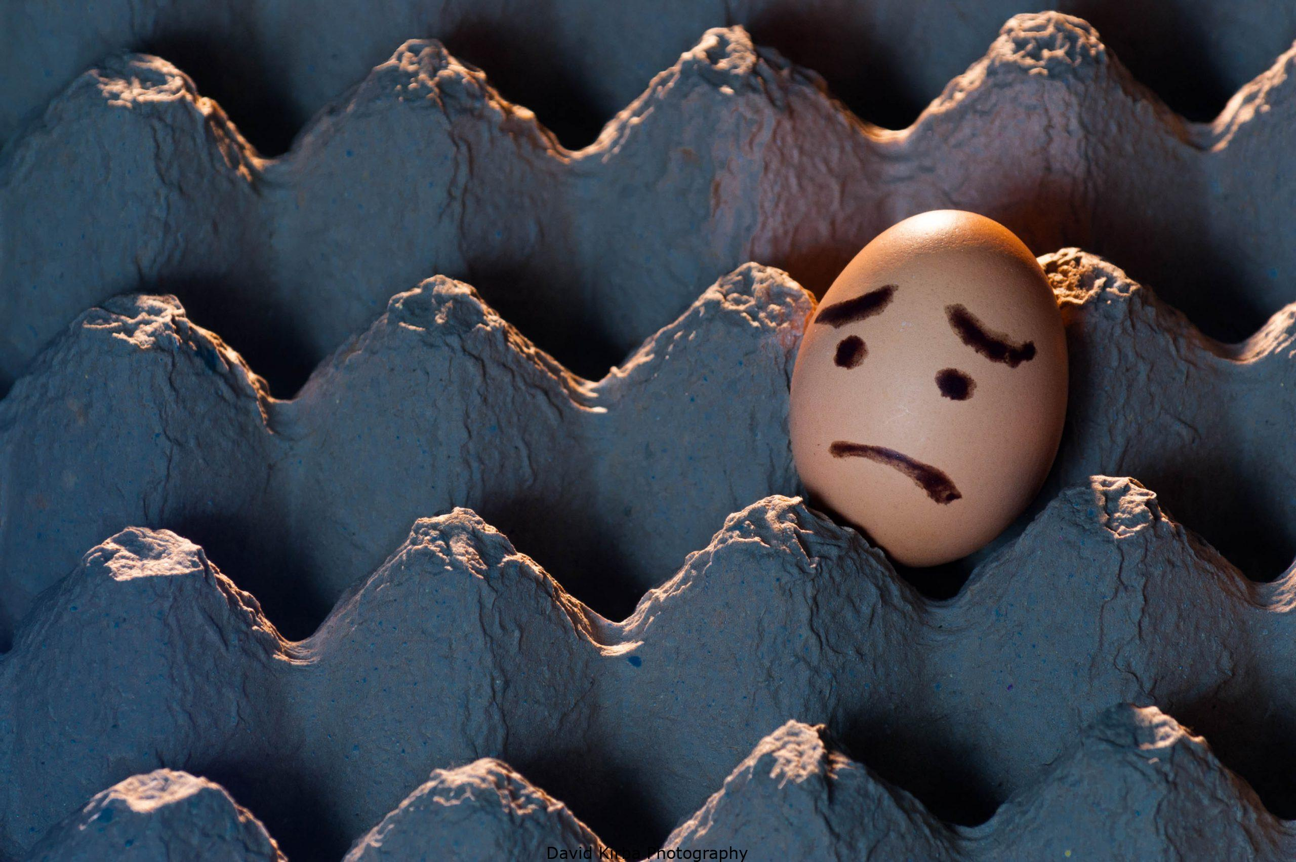 Sad Faced Egg in Egg Tray