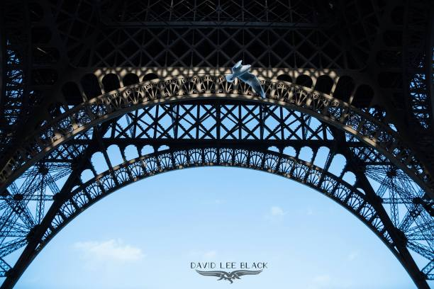 paris.watermark