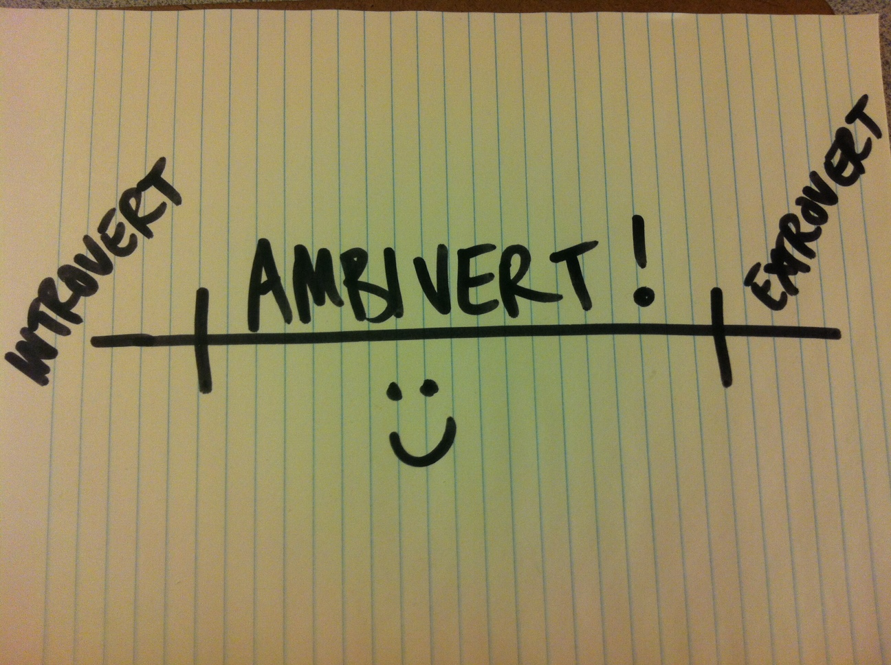 19 Signs You Re An Ambivert
