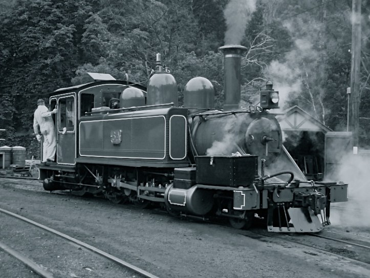 Puffing-billy-hero2.B+W.P1
