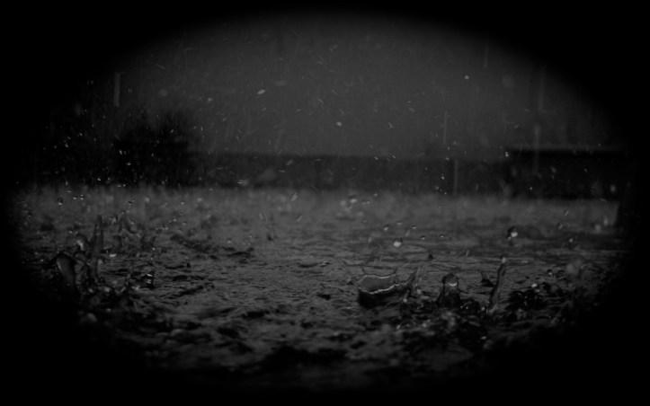 Rainy Image.Really Darkened.P3.jpg