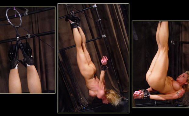Muscle Blonde Suspension