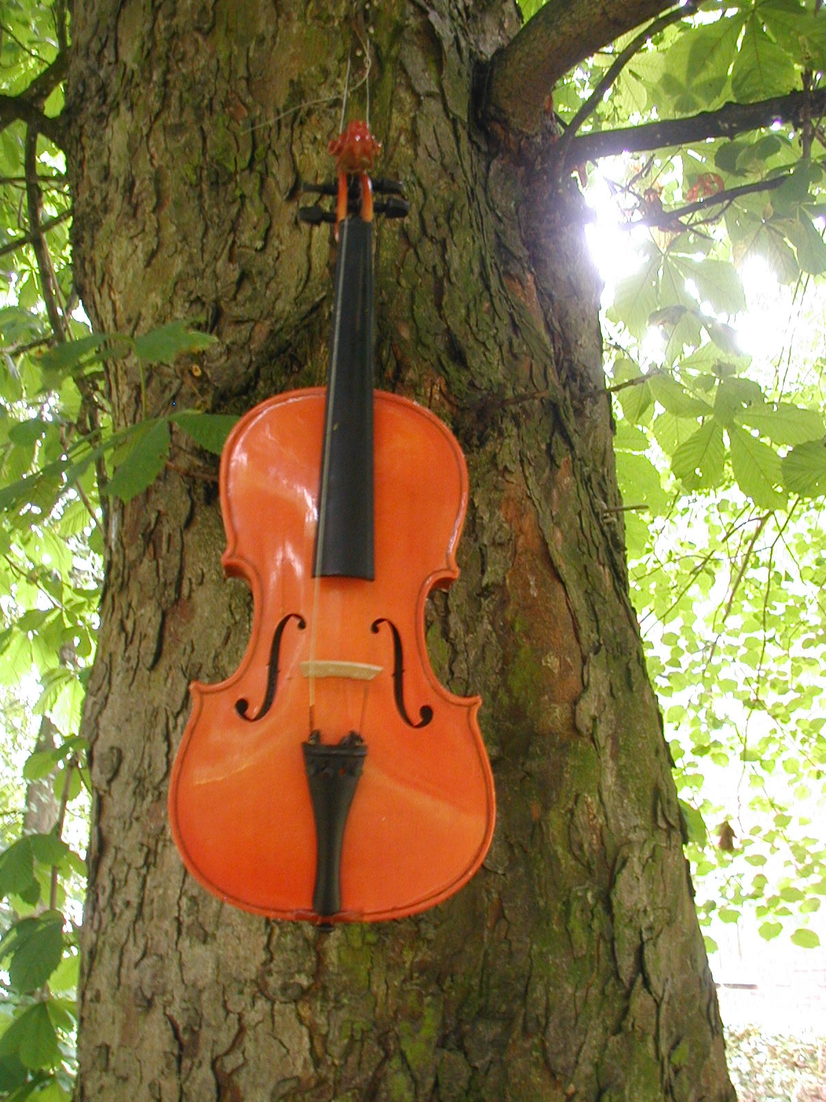 violin scultpure woodlawn court gardens