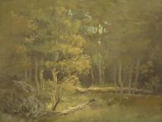 """aspen grove - tahoe   9"""" x 12"""" oil on canvas board"""
