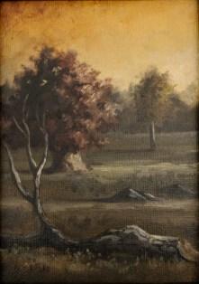 5 x 7 Oil on Canvas