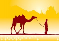 boy-and-camel_8147