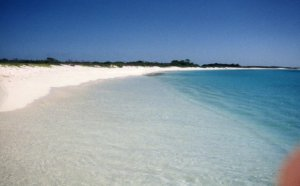 A Pristine beach on Los Roques