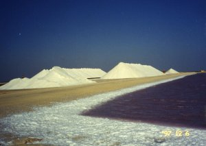 Salt flats on Bonaire