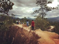 Walking on the forest top at Pai Canyon