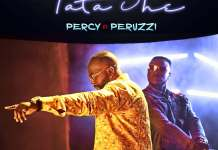 percy ft peruzzi tatashe song download