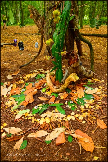 Woodland Sculpture