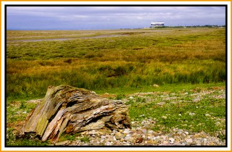 sunderland-point-and-heysham-june-0057